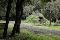 Viejo refugio de las hornillas del pastor o de carbón de leña formadas como un cono en Etna Park imagenes de archivo