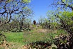 Viejo Rusty Deer Game Feeder en el bosque del oeste de Texas Mesquite fotografía de archivo