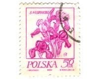 Viejo sello polaco con la orquídea Fotos de archivo libres de regalías
