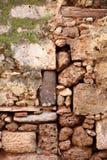 Viejo stonewall con las plantas Imagenes de archivo