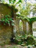 Viejo Sugar Mill Ruins Foto de archivo libre de regalías