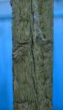 Viejo tablero de madera pintado en un fondo azul Imagen de archivo