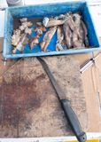 Viejo tablero del cebo con el cuchillo y del corte el calamar para pescar en un viaje foto de archivo libre de regalías