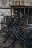 Viejo y oxidado abandono de la bicicleta cerca de la pared con la textura de piedra Foto de archivo libre de regalías