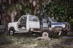 Viejos abandonada cogen los camiones Imágenes de archivo libres de regalías