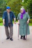 Viejos cónyuges en un paseo en el parque imagen de archivo