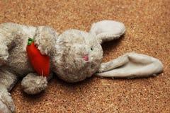 Viejos descensos de la muñeca del conejo en la tierra marrón Imágenes de archivo libres de regalías