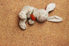 Viejos descensos de la muñeca del conejo en la tierra marrón Fotos de archivo