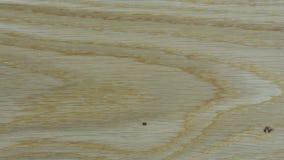 Viejos fondos abstractos de madera metrajes