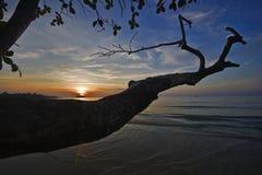 Viejos gancho y marea de la playa tropical Imágenes de archivo libres de regalías