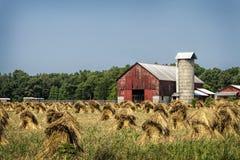 Viejos granero y Hay Stacks rojos Fotografía de archivo libre de regalías