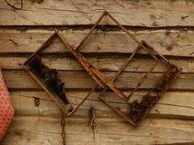Viejos marcos de la cera de la abeja Foto de archivo libre de regalías