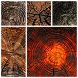 Viejos motivos secados al sol de madera y de la madera Imagen de archivo