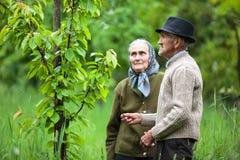 Viejos pares de los granjeros en la huerta Imágenes de archivo libres de regalías