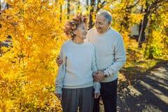 Viejos pares felices que se divierten en el parque del otoño Hombre mayor que lleva una guirnalda de las hojas de otoño a su espo imágenes de archivo libres de regalías