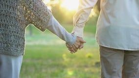 Viejos pares que llevan a cabo las manos y que caminan en parque, fecha romántica, amor y confianza almacen de metraje de vídeo