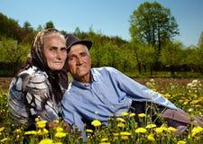 Viejos pares que se sientan en un campo del diente de león Foto de archivo