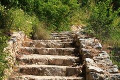 Viejos pasos de piedra con la hierba verde Fotos de archivo libres de regalías