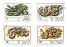 Viejos sellos de correo de URSS con las serpientes Imagenes de archivo