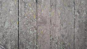 Viejos tableros de la textura de madera Imagen de archivo