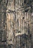 Viejos tableros spruce nudosos Imagenes de archivo