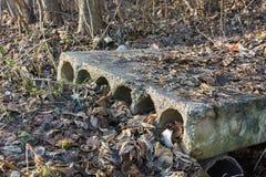 Viejos y dañados bloques de cemento en el follaje Fondo del musgo y del follaje Fotografía de archivo libre de regalías