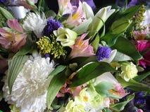 Viel blüht frischer attraktiver bunter Blumenstrauß auf Anzeige Lizenzfreie Stockbilder