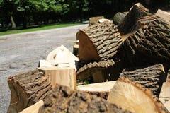 Viel cutted Brennholz, das auf den Boden im Park legt Stockfotografie