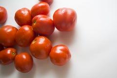 Viel der Tomaten Stockfotografie
