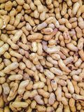 Viel Erdnuss für Hintergrund Lizenzfreie Stockbilder