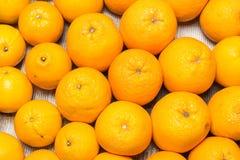 Viel frische rohe Orange Lizenzfreies Stockbild