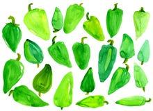 Viel grüner Gemüsepaprika Lizenzfreie Stockfotografie