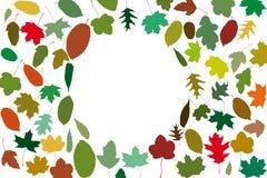 Viel Herbstlaub in eingekreistem Rahmen Lizenzfreie Stockbilder