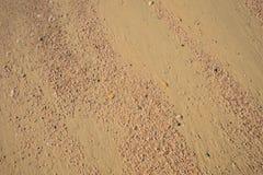 Viel kleines Sprungsoberteil auf Sand, für Hintergrund Lizenzfreie Stockbilder