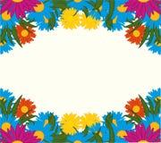 Viel varicoloured Blumenhintergrund stock abbildung
