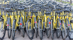 Viel von gelben Fahrrädern Lizenzfreie Stockfotos
