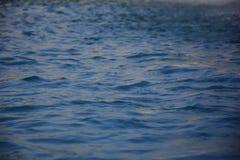 Viel Wasser mit kleinen Wellen stockfotografie