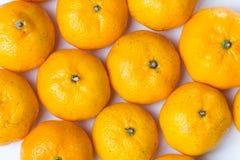 Viel Zitrusfrucht Stockfoto
