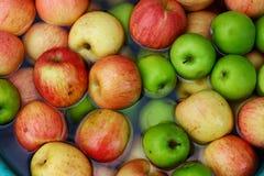Viele Äpfel in den verschiedenen Farben im Wasser lizenzfreies stockfoto