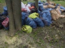 Viele Abfalltaschen mit Bl?ttern aus den Grund Reinigung des Herbstlaubs im Park Horizontales Foto stockfoto