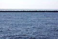 Viele Angler stehen auf einer Mole in der Ostsee in Bolderaja Riga und anziehender Fisch Lizenzfreie Stockfotos