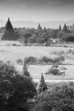 Viele bagan Pagoden auf Myanmar Stockbilder