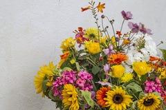 Viele bunte Sommerblumen Stockfotografie