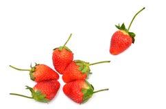 Viele der Erdbeere stockfoto