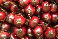 Viele der roten Palmenfrucht Stockbilder