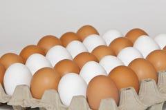 Viele Eier Lizenzfreie Stockbilder