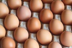 Viele Eier in der Paketnahaufnahme Stockfotografie