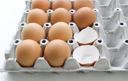 Viele Eier in einem Behälter von rohen Eiern Stockfoto