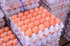 Viele Eier im Kasten Stockfoto