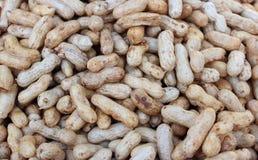 Viele Erdnüsse lizenzfreies stockbild
